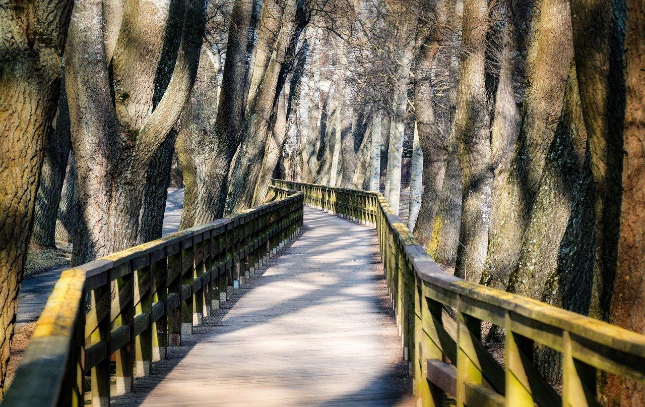 Steg Brücke Fürth